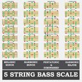 String bass scale minor for bass player teacher and student this is Royalty Free Stock Image