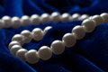 String of pearls on the blue background Stock Images