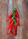 String of Red Chillis Royalty Free Stock Images