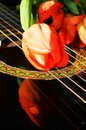 Strings and tulips Royalty Free Stock Photo