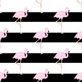 Striped background with pink flamingos