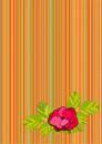 Striped background with rose Stock Photography