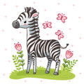 Striped cute zebra is standing on the green meadow.