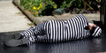 Striped man lying on the ground