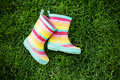 Striped rain boots on grass Royalty Free Stock Photo