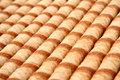 Striped wafer tubules with a chocolate cream Stock Photos