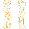 Stripes of Wheat and oat ears with grains seamless pattern. Golden spikes. Sheaf