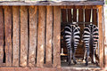 Stripes. Zebra Royalty Free Stock Images