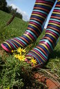 Stripy wellington boots closeup Royalty Free Stock Photos