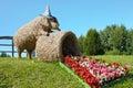 Strohschweinskulptur und begonienblumen Lizenzfreie Stockfotografie