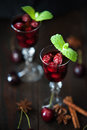 Strong alcohol cherry liqueur Royalty Free Stock Photo