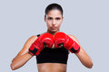 Strong and beautiful young sporty woman in boxing gloves looking art camera while standing against grey background Stock Image