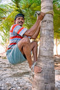 Strong deft man  are climbing on coconut tree Royalty Free Stock Photo