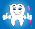 Strong smiling tooth character with brush Stock Photo