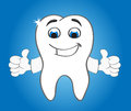 Strong smiling tooth character with two hands Royalty Free Stock Photo