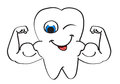 Strong tooth Royalty Free Stock Photo