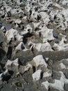 Structure of limestone coast, Doolin, Ireland, EU. Stock Image