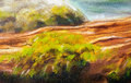 Structure of wooden log covered with moss on the riverside, closeup painting detail. Royalty Free Stock Photo