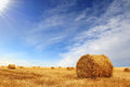 Stubble field and hay bales Royalty Free Stock Photo