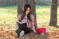 Student learns outdoors beautiful autumn day Royalty Free Stock Image