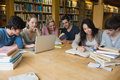 Students learning in a library Royalty Free Stock Photo