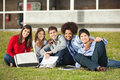 Students sitting on grass at college campus portrait of happy multiethnic Royalty Free Stock Image
