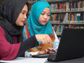 Students studying in a library Royalty Free Stock Photo