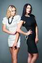 Studio fashion shot two beautiful women blonde and brunette wearing dresses young Royalty Free Stock Images