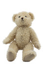 Studio photo of brown light bear toy Royalty Free Stock Photography