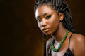Studio portrait of attractive african woman with braids. Royalty Free Stock Photo