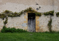 Study of wooden doorway with vines a window taken in burgundy france abstract texture detail old masonary Stock Images
