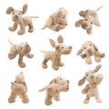 Stuffed animal dog teddybear showing different set of positions Royalty Free Stock Image