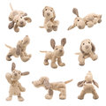Stuffed animal dog teddybear showing different set of positions Royalty Free Stock Images