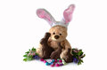 Stuffed bunny and chocolate bunnies a toy bear with ears is hanging with real easter treats such as eggs isolated on a white Stock Images