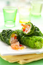 Stuffed cabbage rolls Stock Photography