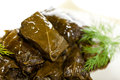 Stuffed grape leaves dolma or azerbaijan turkish and greek cuisine Royalty Free Stock Images