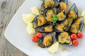 Stuffed mussels dish of cooked filled with breadcrumbs Royalty Free Stock Photography