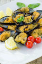 Stuffed mussels dish of cooked filled with breadcrumbs Stock Image