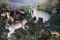 Stuffed predatory animals of the altai territory tourist complex three bears Stock Image