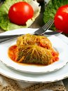 Stuffed savoy cabbage with tomato sauce. Stock Photography