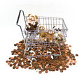 Stuffed Toys in Cart Stock Photography