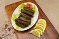 Stuffed vine leaves , Lebanese Cuisine Royalty Free Stock Photo