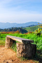 Stump chair and bluesky in mon cham chiangmai thailand Royalty Free Stock Image