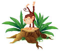 A stump with a playful monkey illustration of on white background Stock Photo
