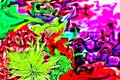 Stunning Abstract photograph of Mother`s Day Flowers