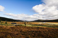 Stunning shot of the scottish highland landscape taken at the A890 to Inverness - Scotland, UK. Royalty Free Stock Photo
