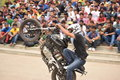 Stunt a bike wheelie during show Stock Photos