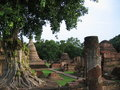 Stupa behind a tree - Sukhothai - Tha�lande Royalty Free Stock Photography
