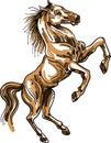 Styled brush stroke jumping horse