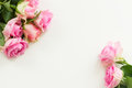 Styled desktop scene with pink fresh rose flowers copy space on white table Stock Photography